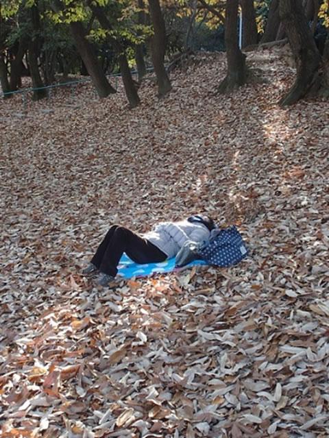 横たわり(イメージ)